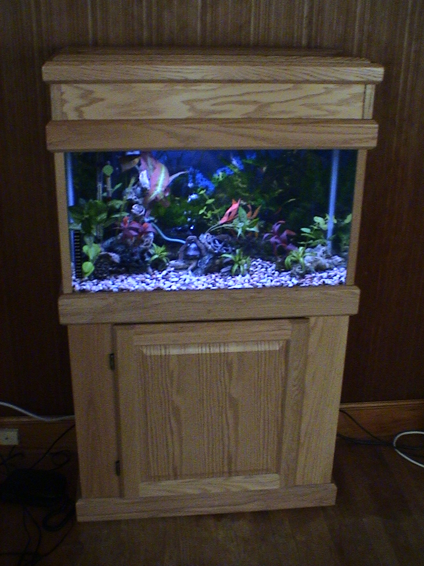 30 gallon fish tank 350 250 30 gallon high fish tank Thirty gallon fish tank